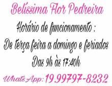 Fotos de Belíssima Flor